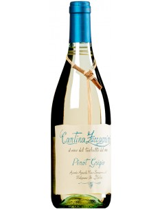 Pinot Grigio Terre di...